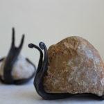 Caracol con piedra